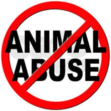 Animal rights paper thesis